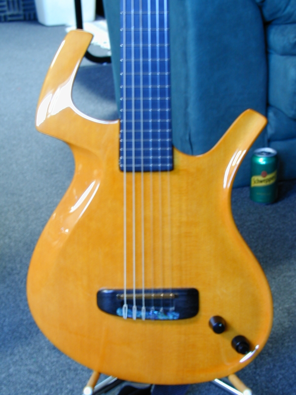 STUDIOMIKEsGEAR - GUITARS I USED TO OWN